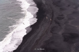 Birds flying across the black sand beach from the Dyrhólaey Lighthouse near Vík, Iceland.