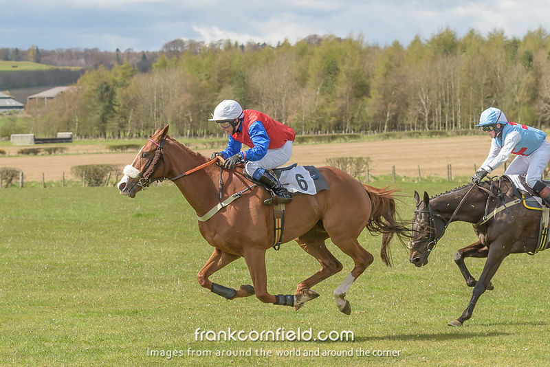 LEVEN, SCOTLAND - APRIL 28, 2018:  Crawford Robertson on Frankie's Promise the Turcan Connell Fife Foxhounds and NAPP Conditi...