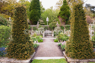 Yew obelisks frame the entrance to the Sunken Garden. Holker Hall, Grange over Sands, Cumbria, UK