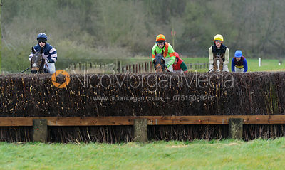 The Woodland Pytchley  Point-to-point at Dingley 26/3 photos