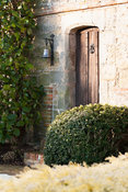 Clipped box and Magnolia grandiflora frame the front door of the Elizabethan manor house.