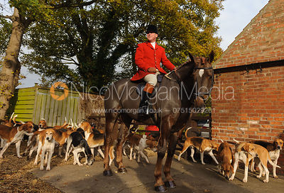 Huntsman John Holliday and the Belvoir Hounds - The Belvoir Hunt at Colston Bassett 23-11