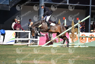 Oliva, Spain - 2018 April 1: Gold tour 1m50 during CSI Mediterranean Equestrian Tour 3.(photo: 1clicphoto.com)