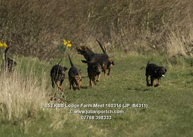 Kent and Surrey Bloodhounds - Lodge Farm meet 16th March 2014