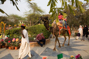 India - Delhi - A man sleeps whilst a camel takes children for a ride at the Annual Garden Festival at the Garden of the Five...