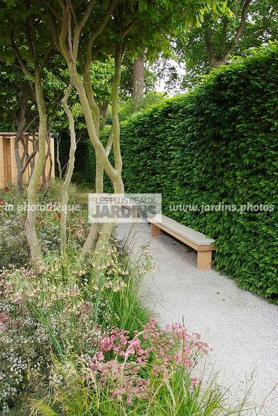Aménagement petit jardin de ville : 12 idées sur Pinterest - Côté Maison