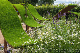 The World Vision Garden at the RHS Hampton Court Flower Show 2016. Designer: John Warland. Sponsor: World Vision. Awarded a G...