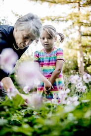 Grandmother and child picking flowers #2