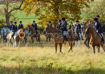 near Denton. The Belvoir Hunt at the Kennels 13/11
