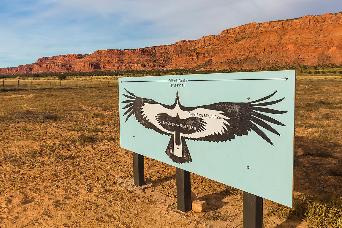 Sign Showing Condor Wingspan in Vermilion Cliffs National Monument