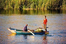 Boys fishing on the Nile