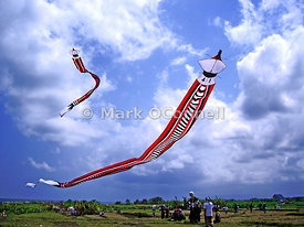 Kite flying competion in Bali