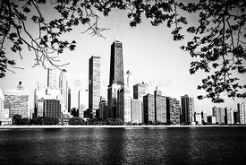 Chicago Skyline Black and White Picture