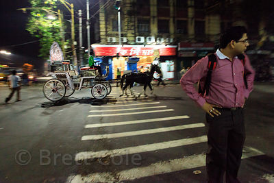 A horse drawn carriage passes through an intersection in Bowbazar, Kolkata, India.