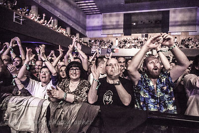 Fans watching Marillion, Wolves, 2015