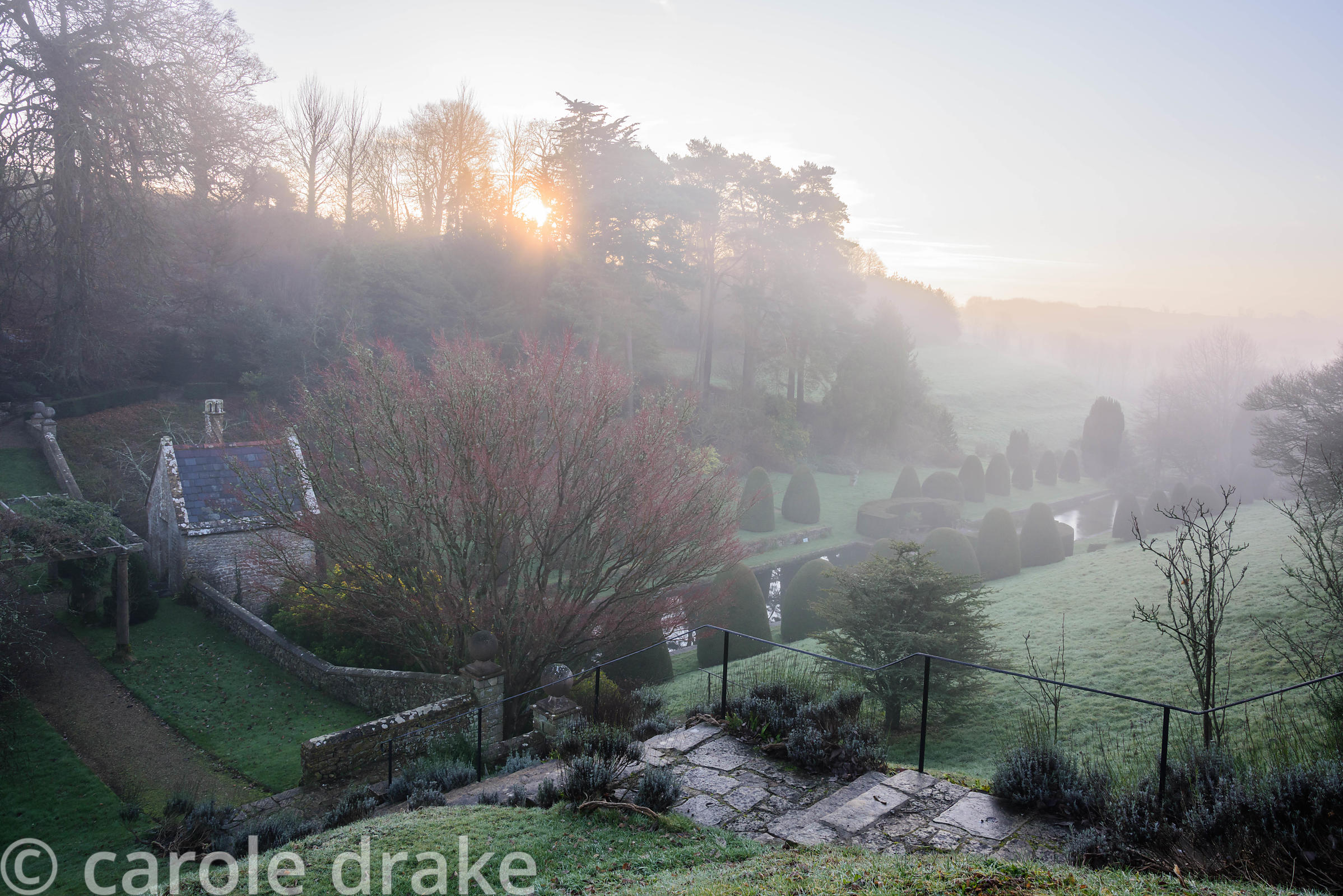 View across the Canal Garden on a winter's morning at Mapperton, Dorset where clipped yews frame a swimming pool and a lily pond