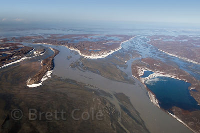 Aerial view of the Copper River Delta, Alaska