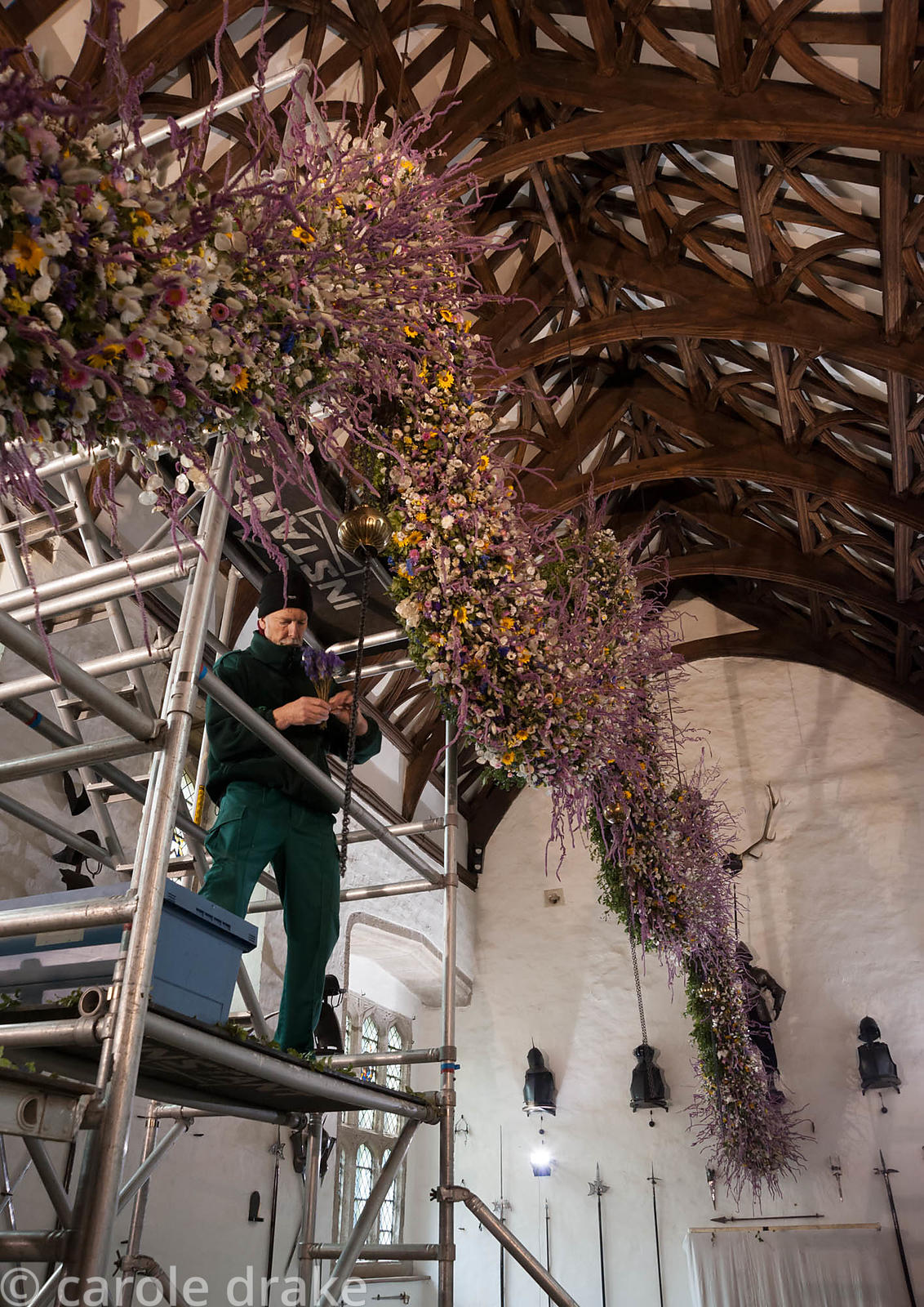 Volunteer Paul Newman helping construct the Christmas garland in the Great Hall. Cotehele, St Dominick, nr Saltash, Cornwall, UK