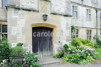 Front door framed with clipped box birds and Japanese anemones. Rodmarton Manor, Rodmarton, Tetbury, Glos, UK
