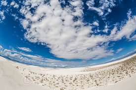 Fisheye View of Gypsum Dunes in White Sands National Monument
