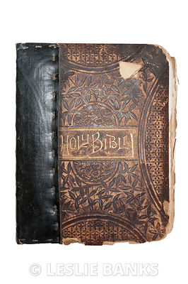 Vintage Bible isolated