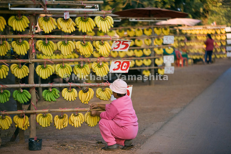 Roadside banana stands west of Nong Kai, Thailand.