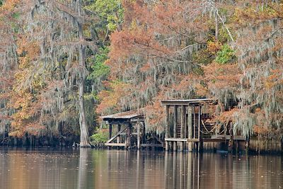 Docks at Caddo