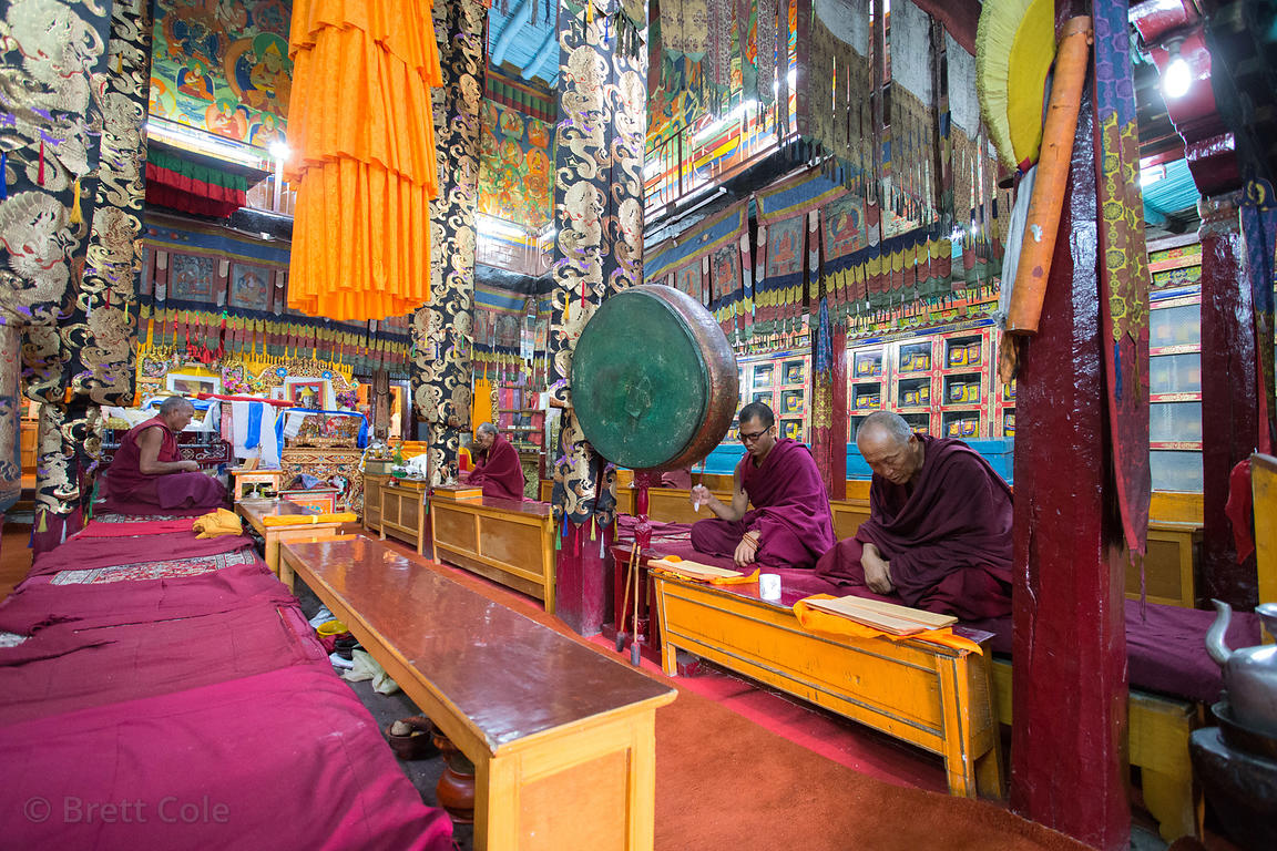 Buddhist monks chant and pray inside the Spituk Gompa monastery, Leh, Ladakh, India