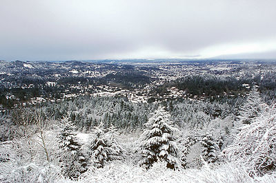 A very rare photograph - an overview of Eugene, Oregon blanketed in snow