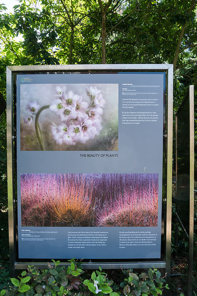 International Photographer of the Year IGPOTY exhibit in  Hortus Botanicus Amsterdam