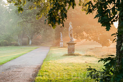 Statues bathed in rays of the rising sun, on the edge of the south lawn with ha ha and fields behind. Forde Abbey, nr Chard, ...