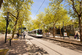 Photo de l arret de tram facultes