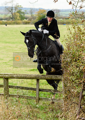 jumping a hunt jump onto Bruce's Lane. The Cottesmore Hunt at Somerby
