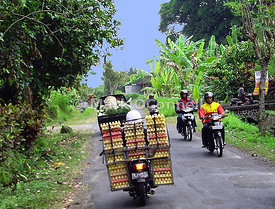 Delivery by bike Bali