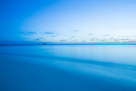 Blue Maldives 2012: Photographer: Neil Emmerson