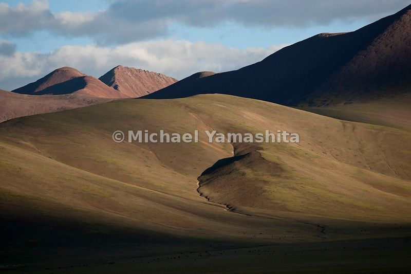 Summer sun turns the sloping mountains above Namtso Lake a golden hue. The vast tracts of grazing land nearby make Namtso, th...