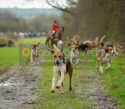 The Belvoir Hunt at Kimberley Farm 28/1