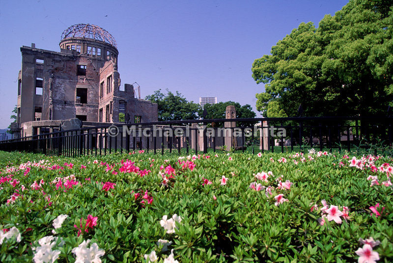 Flowers bloom outside the Atomic Bomb Memorial Dome in Hiroshima. In the immediate aftermath of the A-bombing, it was feared ...