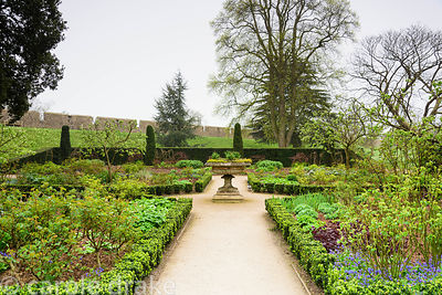 The East Garden, a formal space with low euonymus hedging, roses and herbaceous planting at Bishop's Palace Garden, Wells, So...