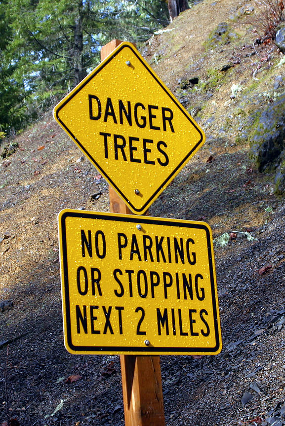 Sign in the Umpqua National Forest in Oregon reads Danger Trees - No Parking or Stopping Next 2 Miles.