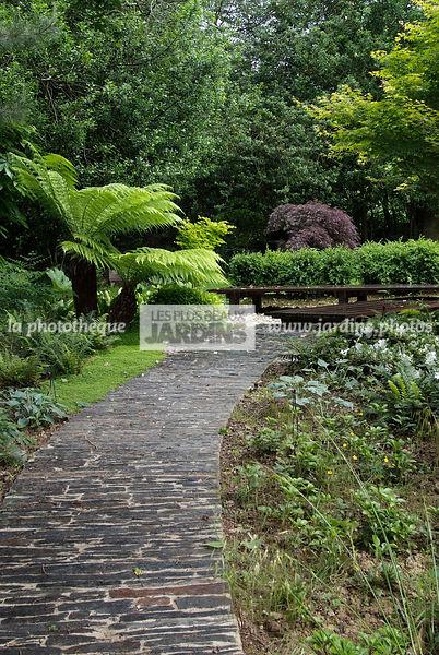 la photothèque | LES PLUS BEAUX JARDINS | Jardin tropical ...