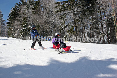 Woman learning to sit ski at an alpine ski field