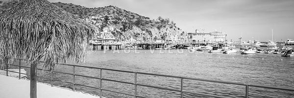 Catalina Island Tiki Umbrella Black and White Panorama Photo