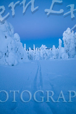 Mountaintop Ski Trail Blue Moment