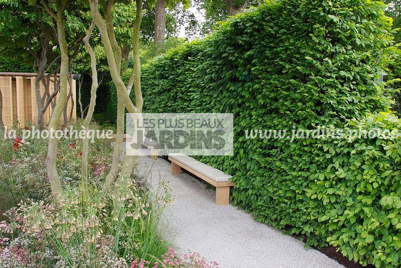 la photothèque | LES PLUS BEAUX JARDINS | Jardin contemporain. Haie ...