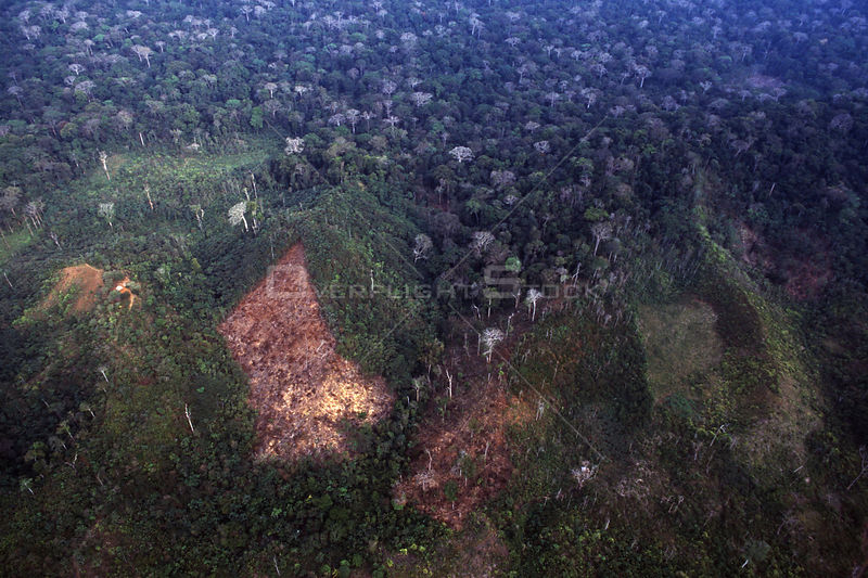 PANAMA Darien Gap -- Aerial photo showing a recently deforested area of the rainforest in the Darien Gap of Panama