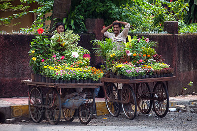 Two flower sellers tend their wooden carts in the Pali Naka neighborhood of Bandra West, Mumbai, India.