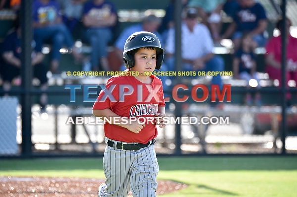 5-30-17_LL_BB_Min_Dixie_Chihuahuas_v_Wylie_Hot_Rods_(RB)-6094