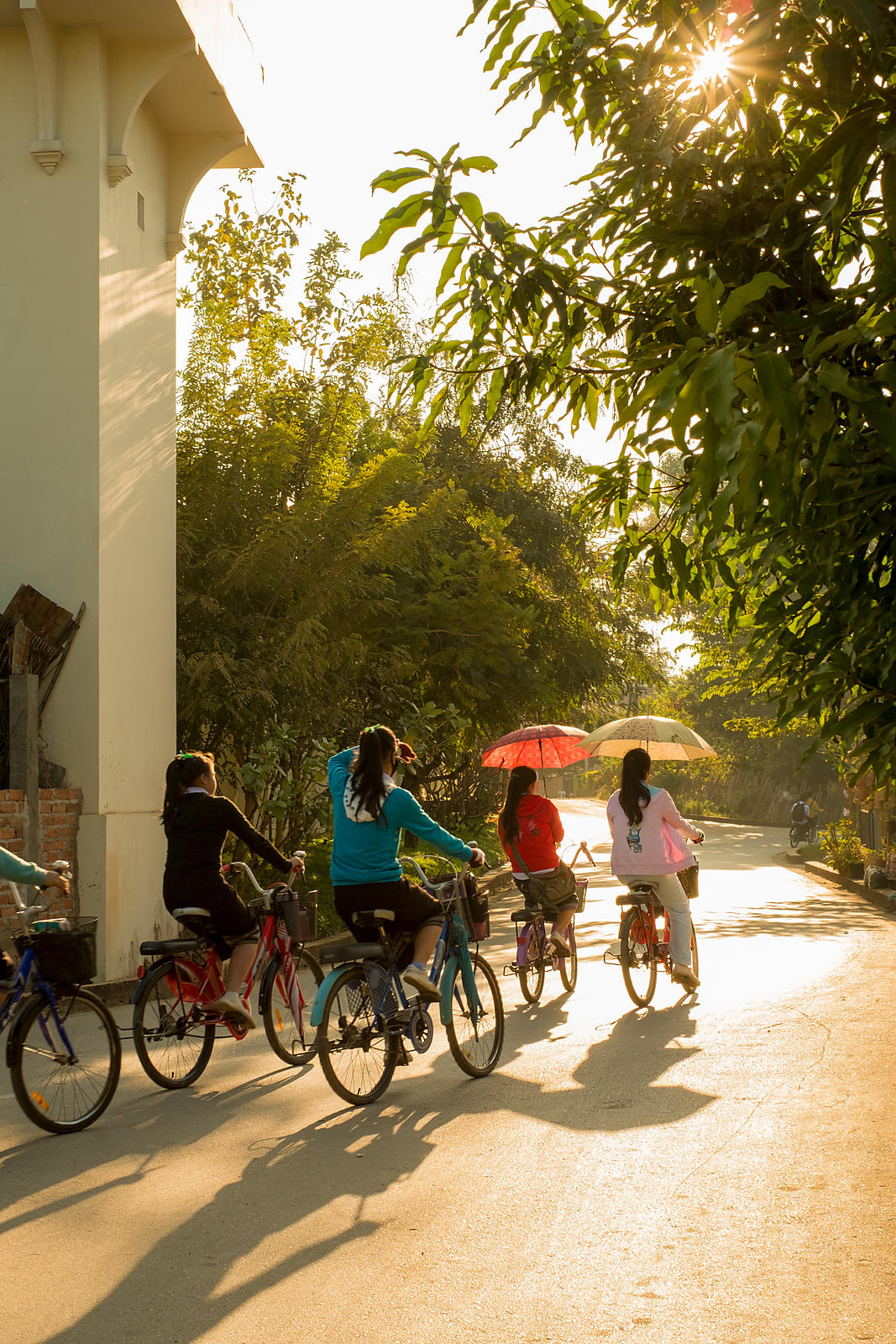 A group of young women riding bikes in the afternoon sun, Luang Prabang, Laos