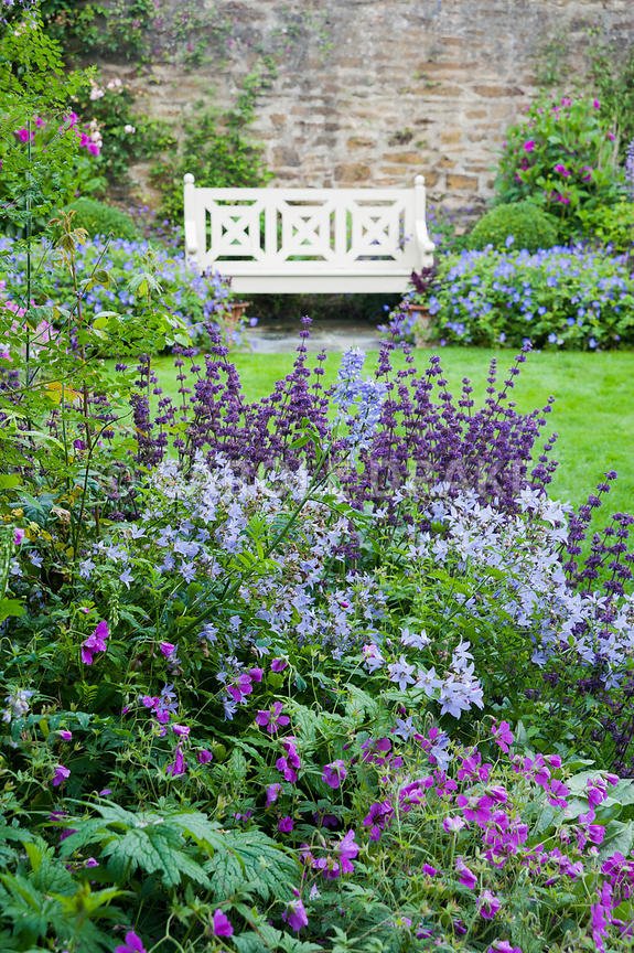 The Walled Garden planted with purples, pinks and blues including campanulas, Geranium Patricia = 'Brempat', Salvia verticill...